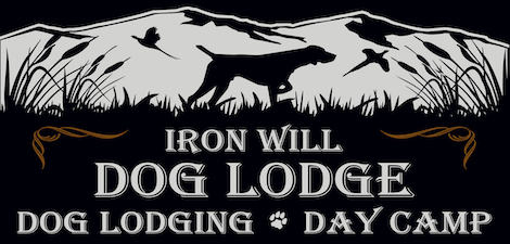 Iron Will Dog Lodge